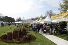 RHS Flower Show Cardiff to celebrate birth of Roald Dahl, http://prolandscapermagazine.com/rhs-flower-show-cardiff-celebrate-birth-roald-dahl/,