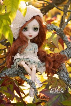 Juliet in a marple tree | by Valérie Busymum