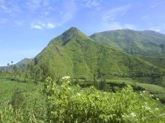 On your way from Temanggung to Wonosobo Central Java, you'll see such scenery. :)