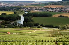 """7 Best Wine Regions In France Champagne. """"Invented"""" by Dom Pierre Perignon, small amounts are made every year. Champagne is made from the red pinot noir, the black pinot meunier and the white Chardonnay. Champagne Region France, Francis Poulenc, Paris France Travel, Ardennes, Reims, France Photos, Visit France, Loire, Countries Of The World"""
