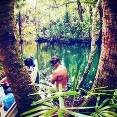 Getting ready to snorkel this hard to reach spring on the Chassahowitzka River. #floridasprings #chassahowitzka #floridafun #floridasummer #swimming #floridaliving #swimminghole #canoeing #kayaking #kayakflorida #hiddenspring #hiddenflorida #hardtofind #hardtoreach #florida #lovefl #visitfl #floridarivers #underwater_florida #snorkeling #freediving #swimwithalligators #secretflorida #floridanature