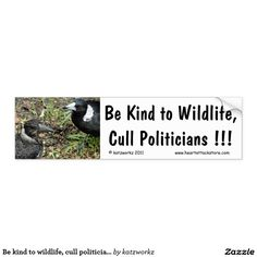 Be kind to wildlife, cull politicians... car bumper sticker - #cull #magpies #politicians #zazzle Click on photo to view item then click on item to see how to purchase that item.