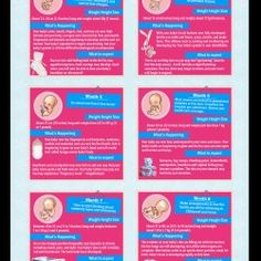 Pregnancy Month By Month Infographic - this handy guide can help you plan your j. - Pregnancy and baby - Pregnant 2 Baby, Baby Time, First Baby, Pregnancy Labor, Pregnancy Months, Stages Of Pregnancy, Pregnancy Guide, Pregnancy Belly, Pregnancy Trimester Chart