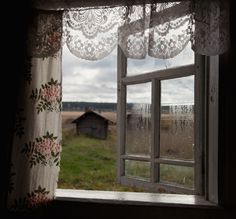 Open window view of country shed and field. One can almost smell the freshness.