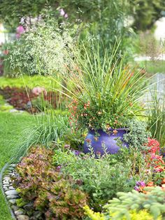 Make an Edible Landscape - I would love, love, love to have something like this one day. Looks nice but everything is edible; double duty