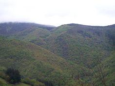 Fuentes Cabadas, verde en primavera, multicolor en otoño.