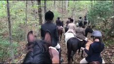 Second day of Virginia Hunt Week in America done and dusted. We rode with Oak Ridge Hunt today in beautiful country. Huge thanks to everyone involved. Oak Ridge, Virginia, America, Country, Beautiful, Rural Area, Country Music
