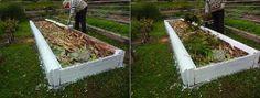 Garden Bridge, Panama, Stepping Stones, Outdoor Structures, Outdoor Decor, Plants, Gardening, Ideas, Compost
