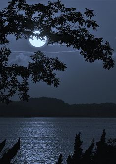 Moonlight over the lake