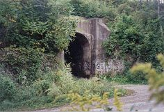 Haunted Hamilton - Articles - The Screaming Tunnel - Niagara Falls, Ontario, Canada