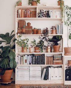 "16.5 mil curtidas, 55 comentários - Urban Jungle Bloggers™ (@urbanjungleblog) no Instagram: ""#PlantShelfie perfection in Fanny's beautiful home in Stockholm, Sweden ☘️ by @createaholic…"""