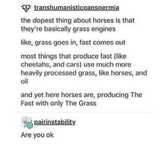 30 Random Memes That Are Just Too Funny For Words - Horses Funny - Funny Horse Meme - - 30 Random Memes That Are Just Too Funny For Words Memebase Funny Memes The post 30 Random Memes That Are Just Too Funny For Words appeared first on Gag Dad. Dankest Memes, Funny Memes, Jokes, Funniest Memes, True Memes, My Tumblr, Tumblr Funny, Funny Cute, The Funny