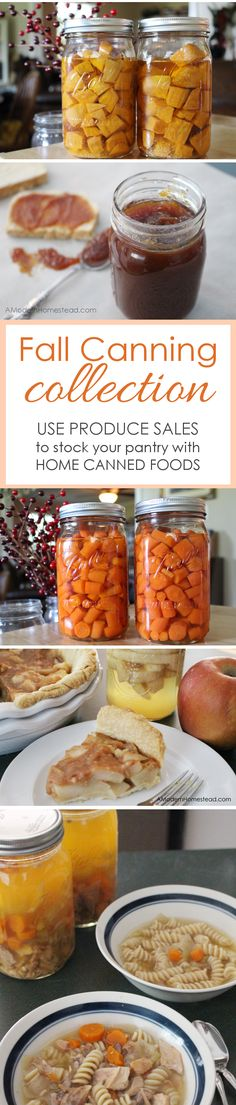 This Fall Canning Collection will help you save money and get stocked up for the whole year, even if you don't have a garden!