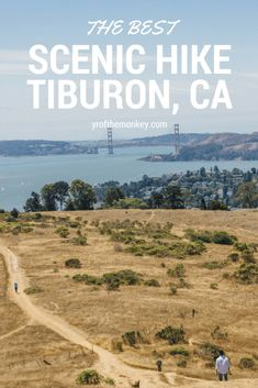 Read this post for one of the best dog friendly hikes in Marin county, California with sweeping views of the golden gate bridge! Hiking Spots, Hiking Trails, Hiking Usa, Pet Travel, Travel Usa, Travel Tips, Canada Travel, Travel Guides, Tiburon California