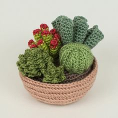 Succulent Collections eight realistic PDF CROCHET by PlanetJune