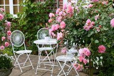 Duftblumen im Garten - Pfingstrosen und Rosen