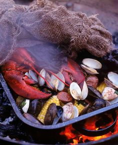 Clam bake -- baked clams covered in net, with peeking veggies
