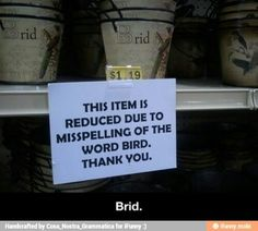 I would buy it just because it says brid