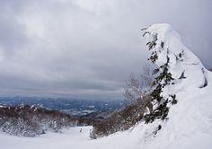 katiastudio.com: landscapes