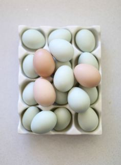 Eggs: http://www.stylemepretty.com/living/2015/04/14/backyard-chicken-coop-with-tiffani-thiessen/ | Photography: Elizabeth Messina - http://elizabethmessina.com/