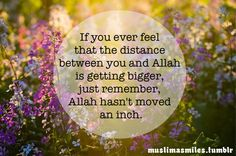 The distance between you and Allah