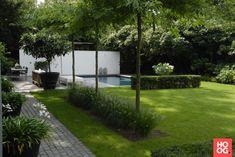 Anne Laansma - Pure eenvoud in een moderne tuin met zwembad - Hoog ■ Exclusieve woon- en tuin inspiratie.