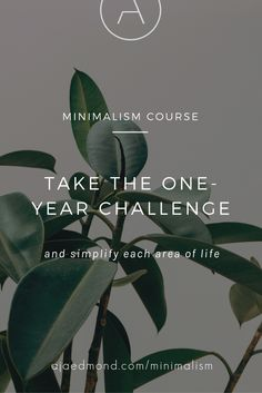Take the one-year minimalism challenge. Simplify your life with this comprehensive online minimalist lifestyle course at minimalism.co