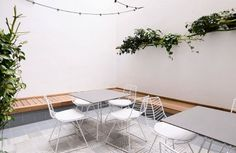 Oficinas Areazero 2.0_Nuestro patio, escape, luz, verde_Diseñado por Areazero 2.0