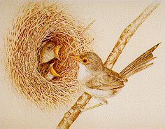 Image detail for -Pyrography by Sue Walters