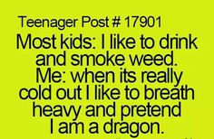I'm a fearsome dragon. I'm a fire drake from the north. Anyone get that refrence