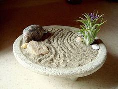 Quiet concrete planter ZEN garden and air plant - All For Herbs And Plants Concrete Bowl, Concrete Planters, Air Plants Care, Plant Care, Underwater Plants, Marimo Moss Ball, Mini Zen Garden, Garden Trellis, Backyard Projects