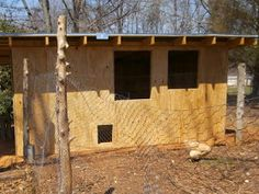 Progress on the chicken coop continues .     Quarter inch plywood walls    We bought the plywood at our area builders surplus store. It is k...