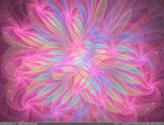 fractal fireworks   Pink Swirl Designs