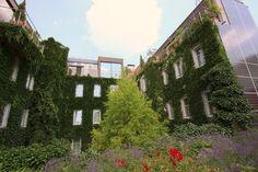 Boutiquehotel Stadthalle in der österreichischen Kulturhauptstadt Wien Im ersten Null-Energie-Hotel bleibt all die Energie um Bücher zu wälzen und Wien literarisch zu erobern...ein vielfach ausgezeichnetes und preisgekröntes Boutiquehotel...
