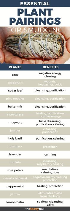 Smudging is the burning of sacred herbs either to achieve a level of spiritual purity and awareness… or simply because it smells incredible. Here are some great pairings and their supposed effects. #smudging #incense #spirituality #smudgesticks
