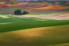 This Almost Unreal Photo Of The Hills In Palouse, Washington 20 Amazing Photos You Don't Want To Miss Great Photos, Cool Pictures, Beautiful Pictures, Amazing Photos, Beautiful Sites, Beautiful World, Beautiful Places, Landscape Pictures, Places Around The World
