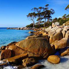 Binalong Bay, East Coast Tasmania The Wonderful Country, What A Wonderful World, Gold Coast Australia, Wild Forest, Little Island, Video Photography, Australia Travel, East Coast, Beautiful Landscapes