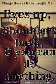 Eyes up, shoulders back, you can do anything. Inspirational Horse Quotes, You Can Do Anything, Positive Thoughts, Feel Good, Positivity, Teaching, Feelings, Eyes, Sayings