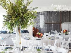 Centerpieces at Emerson Creek included tall arrangements of greenery and low boxed arrangements.  © Andrew's Garden, Inc.
