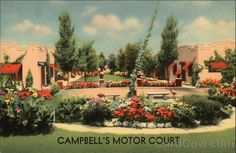Campbell's Motor Court Extreme West side of City, Opposite the Radio Station. Located on the old ranch of the famous scout Buffalo Bill. Watch for the sign of the Camel. On Highway U.S. 30 - 16 De Luxe Apts. 1-2-3 Rooms. All with private tiled baths. Best of furnishings, 1400 West 12th St., North Platte, Nebraska (Lincoln Highway) North Platte Nebraska, Lincoln Highway, Garden Planters, Organic Gardening, Life Is Good, West Side, Painting, Baths, Buffalo