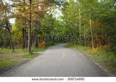 Buy my new pictures on Shutterstock.  :)