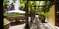 The Yalumba Wine Room, Barossa SA
