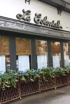 Le Colonial, Asian Restaurant in Gold Coast. See the menu, 13 photos, 8 critic reviews, 7 blog posts and 5 user reviews. Reviews from critics, food blogs and fellow diners.