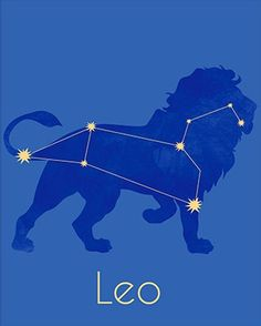 Leo ~ the Lion