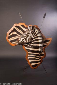 3D Zebra wall mount More