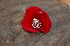 Wedding rings. Blane Marable Wedding Photography Athens, GA UGA Chapel