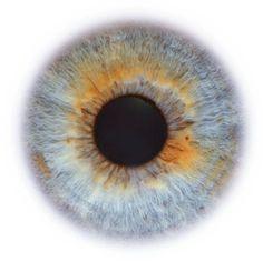 20 Amazing Animated Eye Gifs - Best Animations