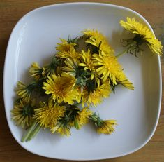 Dandelion, Stuffed Mushrooms, Herbs, Cooking, Flowers, Stuff Mushrooms, Kitchen, Dandelions, Herb