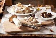 Hoy Javier Munárriz o más conocido como Gastrohunter en el blog Miss and Chic, nos trae su selección de los mejores restaurantes para disfrutar de las setas en la capital ¡Recuerda, las #setas están de moda!