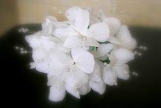 Fiori di mirto realizzati a mano in carta crespa e pistilli con perline